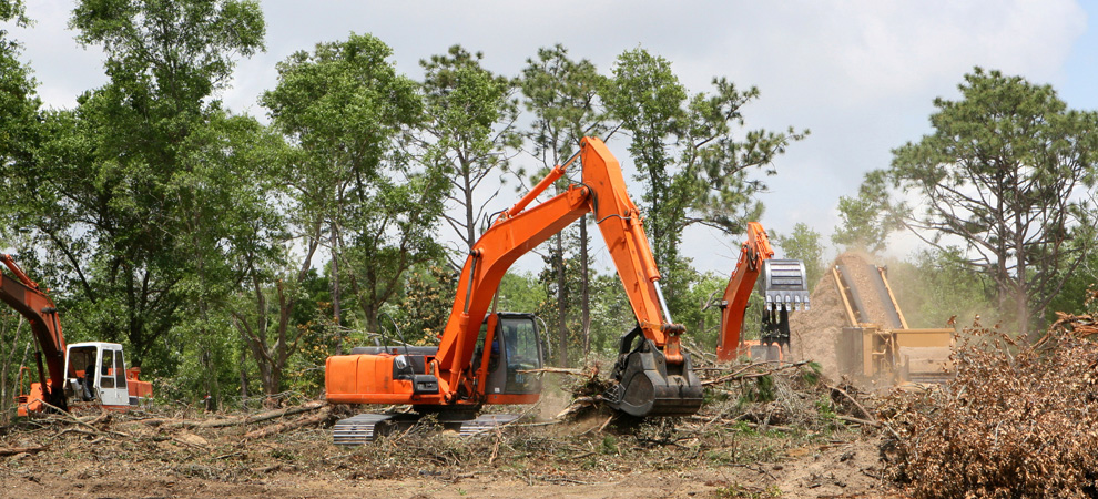 Detroit Land Clearing